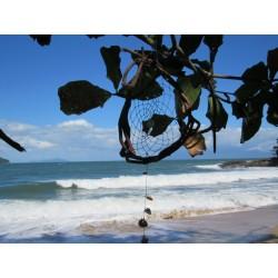A Trilha das sete praias de Ubatuba